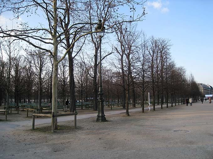 Jardin_des_Tuileries_paris_france_europe_tour_travel_tourism_vacation_trip_day_march_trees_day_view