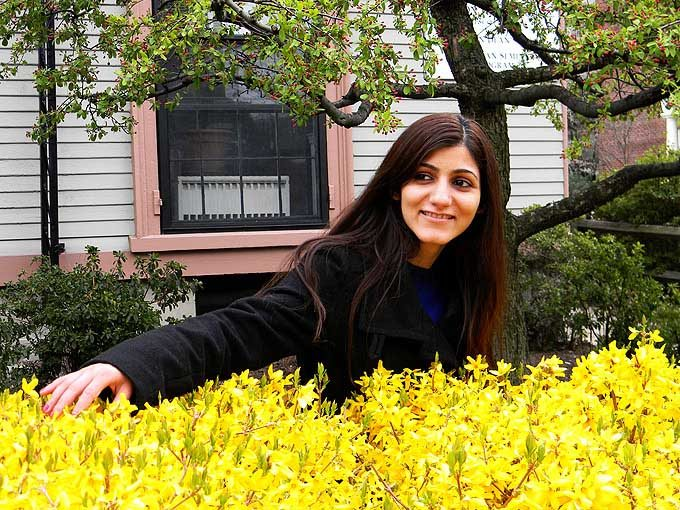 cambridge_ma_boston_usa_red_small_tiny_spring_flowers_bloom_blossom_beautiful_tree_yellow_bush_shilpa_ahuja