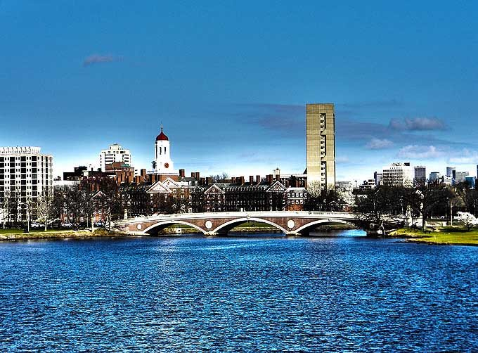 cambridge_ma_boston_usa_spring_flowers_bloom_blossom_school_harvard_university_charles_river_bridge_hdr