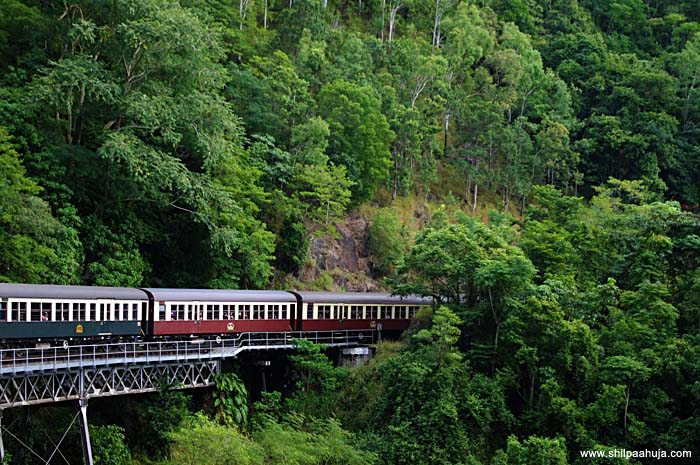 kuranda_scenic_railway_barron_falls_train_rainforest_traveling_cairns_queensland_australia_tourism_trip_travel_planning_things_to_do_activities_beautiful