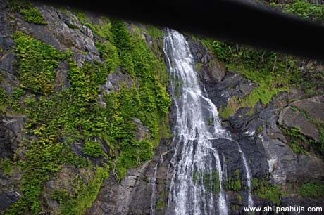 kuranda_scenic_railway_barron_falls_train_rainforest_traveling_cairns_queensland_australia_tourism_trip_travel_planning_things_to_do_activities_beautiful_1