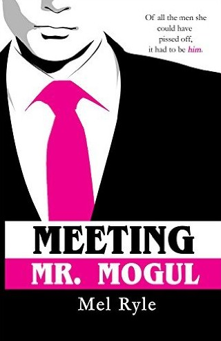 top-best-popular-chick-lit-books-novels-reads-meeting-Mr-Mogul
