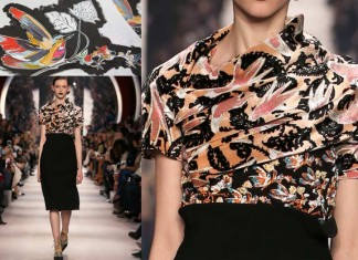 DIOR_AW1617-fall-winter-2016-rtw-ready-to-wear-detail-hand-painting-birds-model-dress-design