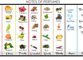 notes-of-perfumes-floral-fruity-spices-aqua-2016