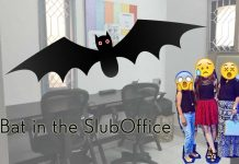 shilpaahuja-fashion-blog-office-bat-animals-scared-style-blogger