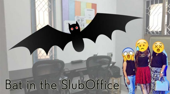 shilpaahuja-fashion-blog-office-bat-animals-scared-style-blogger