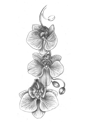 unique-and-beautiful-tattoos-orchid-tatoo-art-inked-winter-2017
