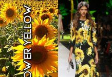 LATEST-FASHION-COLORS-top-color-trends-spring-summer-2017-DOLCE-gabbana-sunflower-yellow