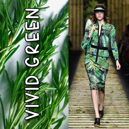 LATEST-FASHION-COLORS-top-color-trends-spring-summer-2017-MAX-MARA-GREEN-1