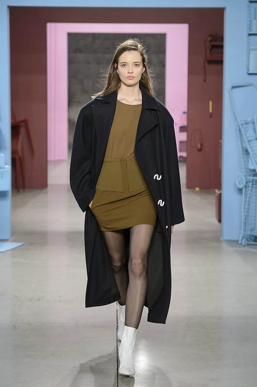Tibi-fw17-rtw-fall-winter-2017-18-collection (4)-dress-coat