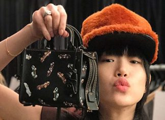 coach-fw17-rtw-fall-winter-2017-outfit-collection (4)-handbag-hat-mini-micro