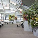 awesome-fashion-photos-jason-wu-nyfw-ss18-fashion-show-set-design-flowers-architecture