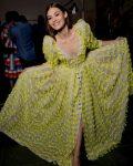 nyfw-ss18-rtw-pretty-instagram-pictures-carolina-herrera-applique-gown