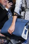 altuzarra-latest-handbag-trends-structured-blue-bag