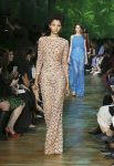 elie-saab-spring-summer-2018-rtw-ss18-collection (51)-embellished-gown
