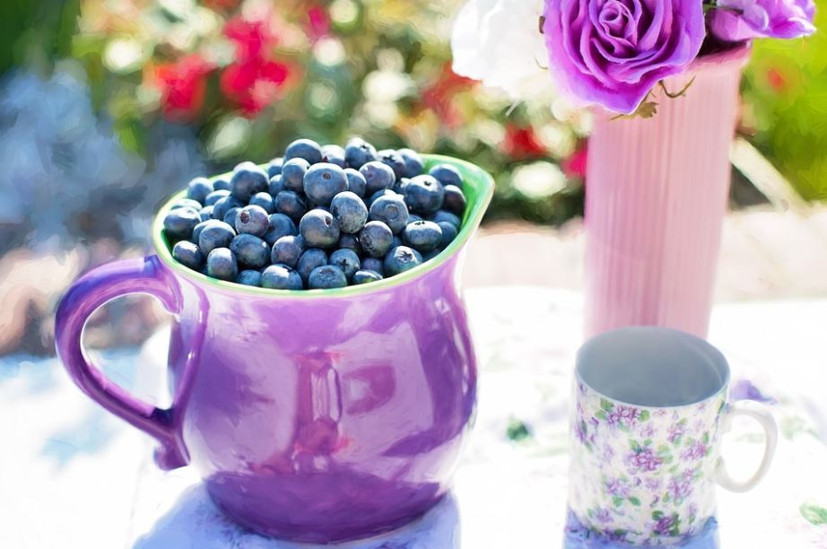 blueberry-infused-fruit-tea-infusions-drinks-typees-flavors