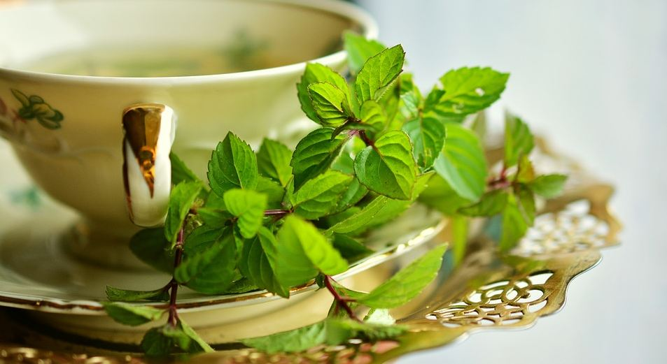 infused-herbal-teas-types-peppermint-health-benefits