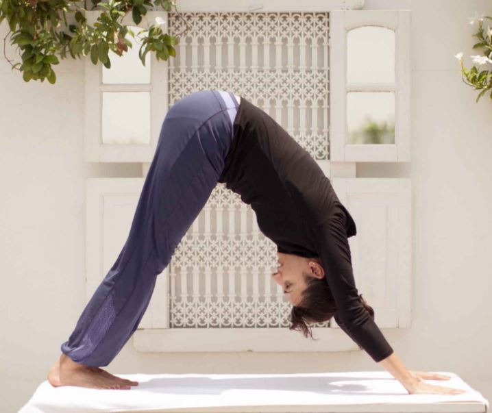 8-mountain-pose-inverted-v-suryanamaskar-shakti-yoga