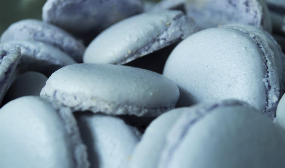 best-gourmet-macarons-flavors-fillings (2)-blueberry
