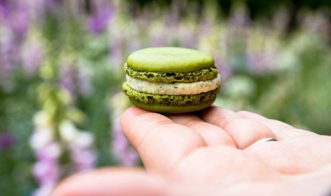 best-gourmet-macarons-flavors-fillings (6)-pistachio