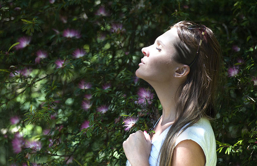 holistic-healing-health-fitness-lifestyle-wellness