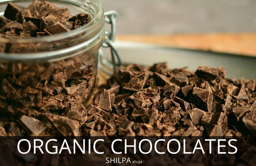 organic chocolate organic-chocolates-cocoa-beans-inredients-brands