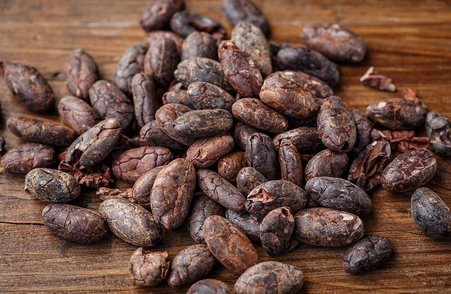 organicallly-grown-cocoa-beans-chocolates