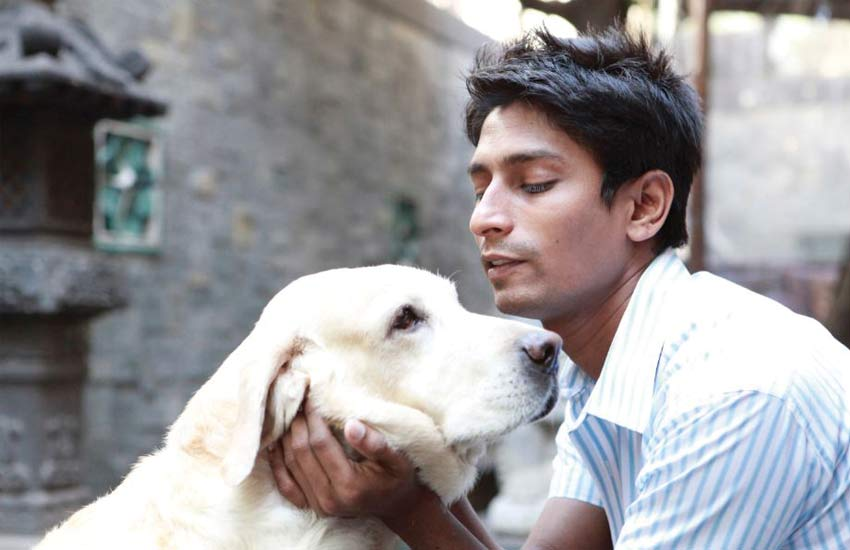 sachin-bangera-peta-india-animal-rights-activist-ethical-fashion