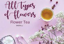 all-types-of-flowers-herbal-infused-tea-drinks-bevergaes