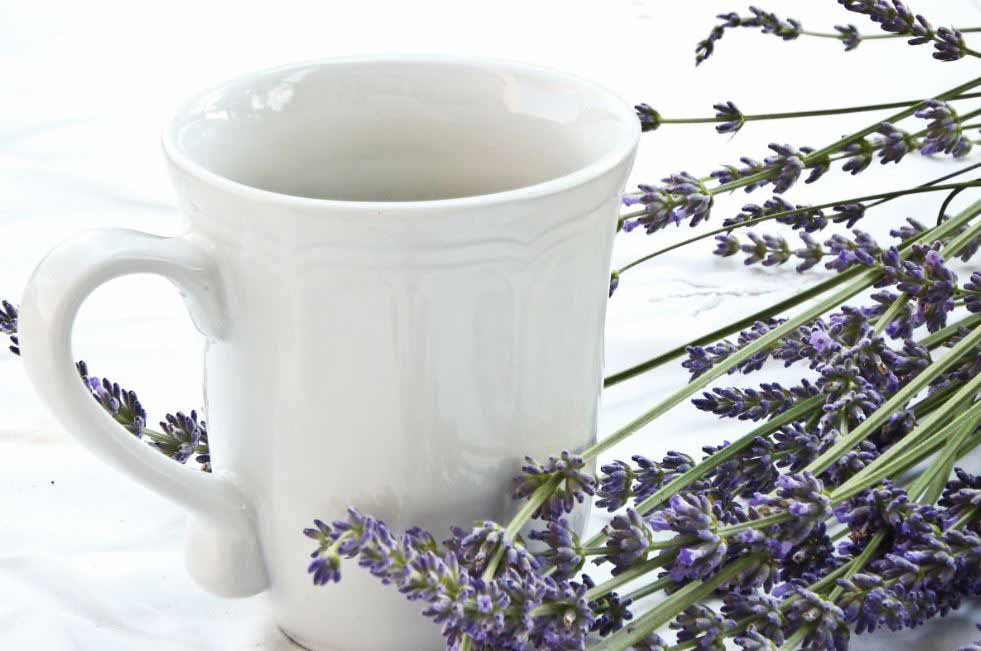 all-types-of-flowers-teas-infused-herbal-tea-(3)-lavender