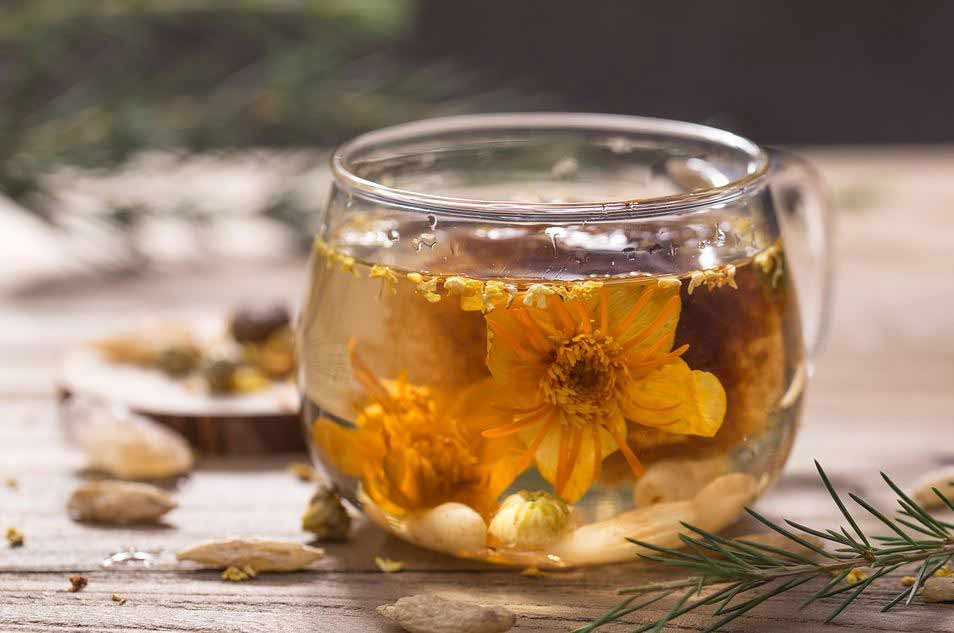 all-types-of-flowers-teas-infused-herbal-tea-(6)-hawthorn