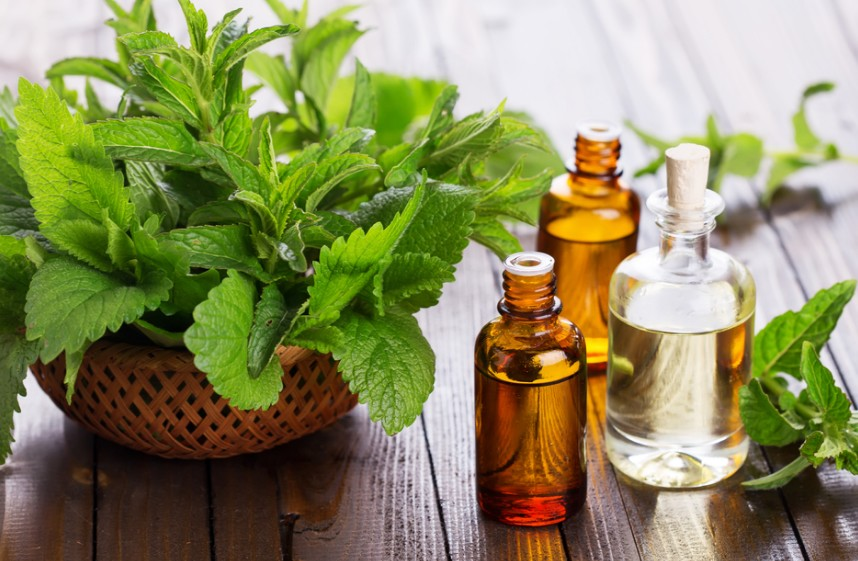 best-essential-oils-for-acne-barefut- peppermint