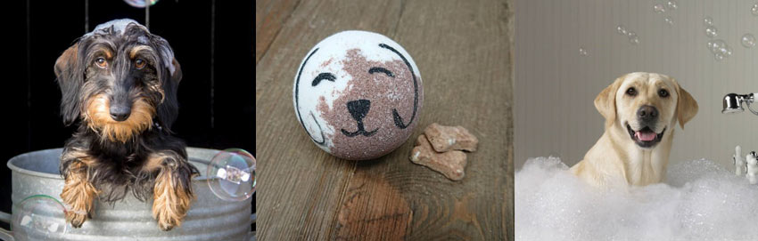 bubble-bath-soap-bath-bomb-dogs-fun-ideas-how-to