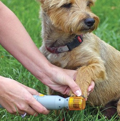 grooming-dogs-pedi-paws-nail-shaper-Rhonda Smith-how-to-ideas