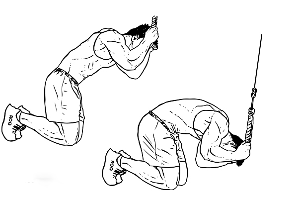 kneeling-cable-crunches-fit-fitness-exercises