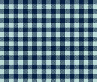 gingham---fashion-dictionary-glossary-terms-types-of-prints-vicky-highfill-via-pin