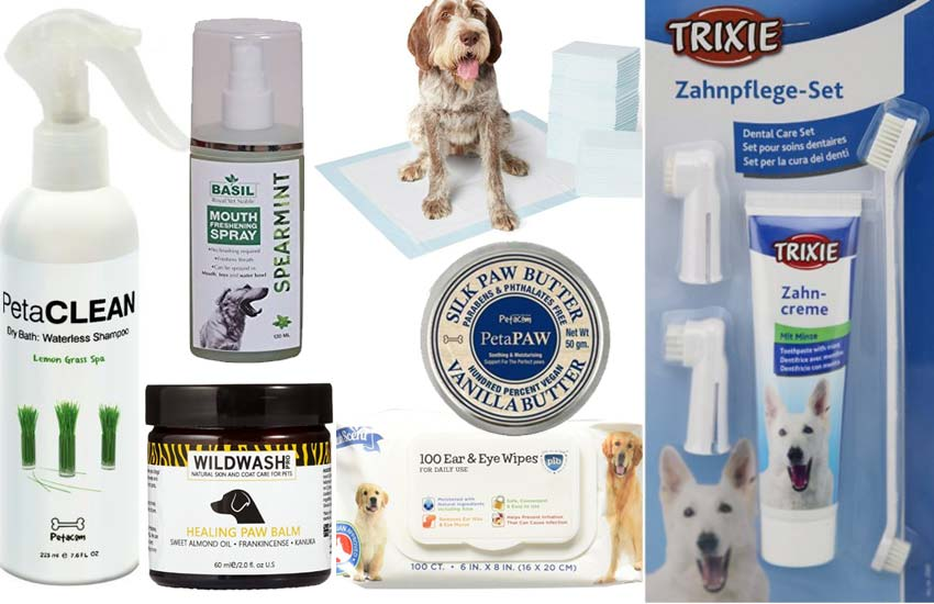 personal-hygienge-dogs-grooming-ideas-how-to