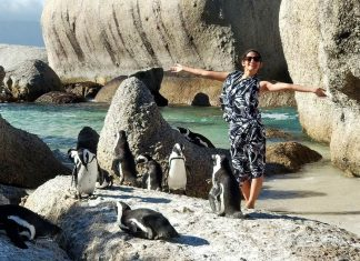 what-is-happiness-travel-choose-penguins-shilpa-ahuja-motivation-quotes