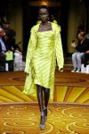Christian Siriano collection-ss19-fashion-show-racial diversity 1