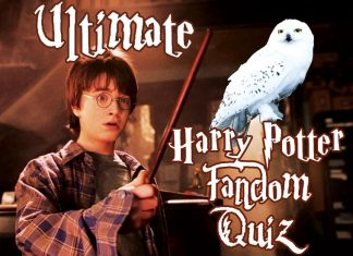 how big of a happy potter fan are you true real quiz ultimate