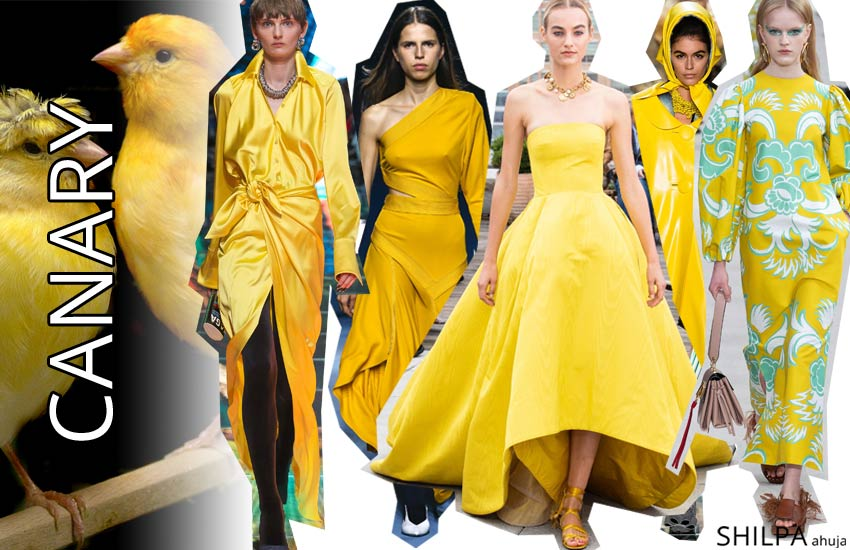 runway color trends forecast spring 2019 Canary yellow