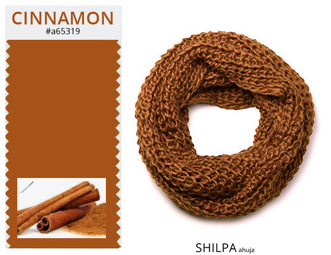 winter-colors-palette-trendy-fashion-rust-cinnamon