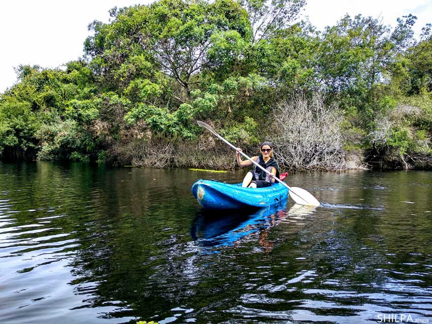 south-africa-travel-tips-garden-route-kayaking knysna