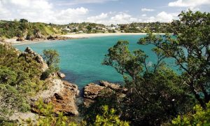 WaihekeIsland Auckland region new zealand nature travel guides