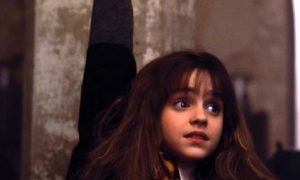hermione harry potter 2